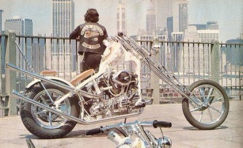 [Image: bike14.jpg]